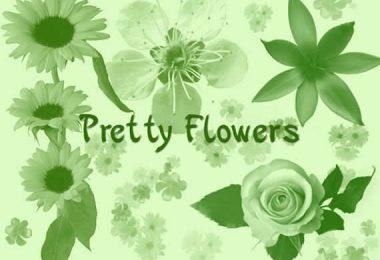 Set di  brushes figuranti fiori