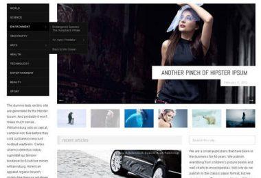 28 temi WordPress
