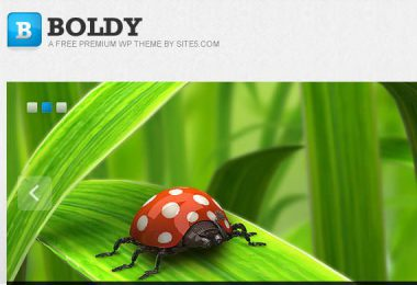 Template WordPress da scaricare gratis