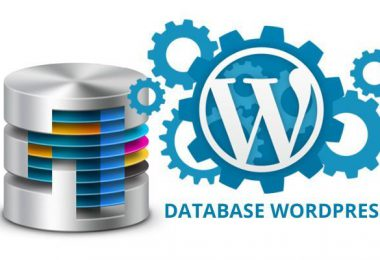 Wp-sweep, il plugin per mantenere il database di WordPress in perfetta efficienza
